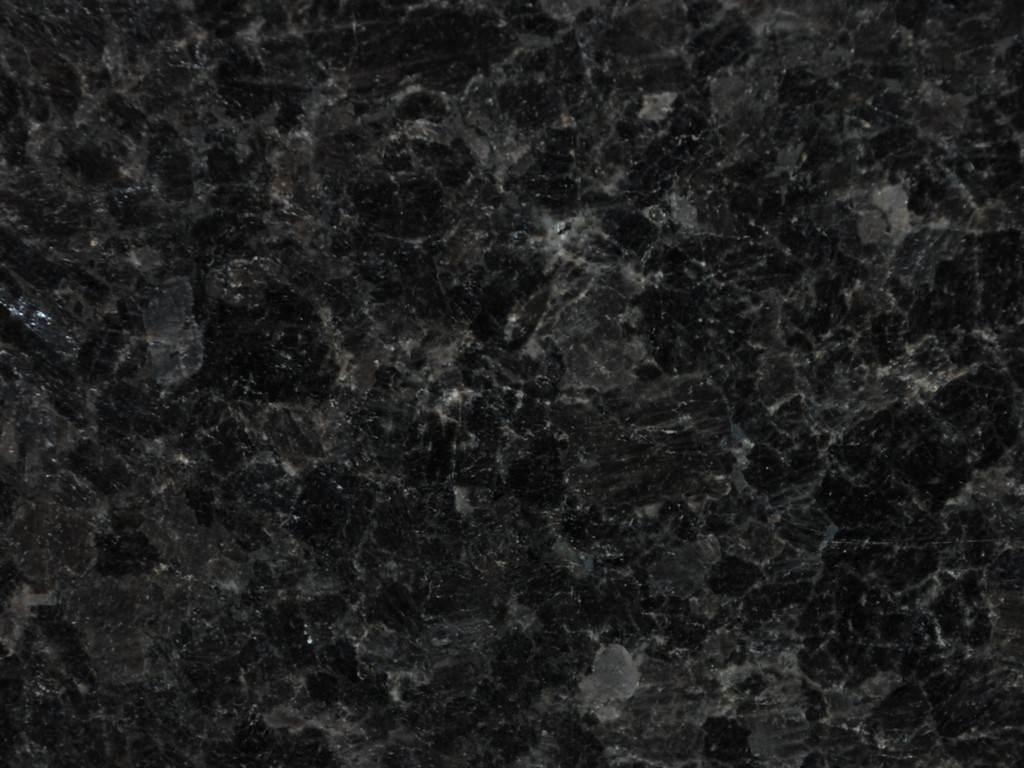black_antique_labrador_supreme